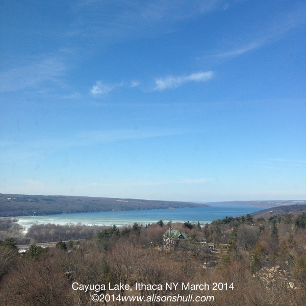 March 2014 Cayuga Lake Ithaca New York - photograph by Alison Shull