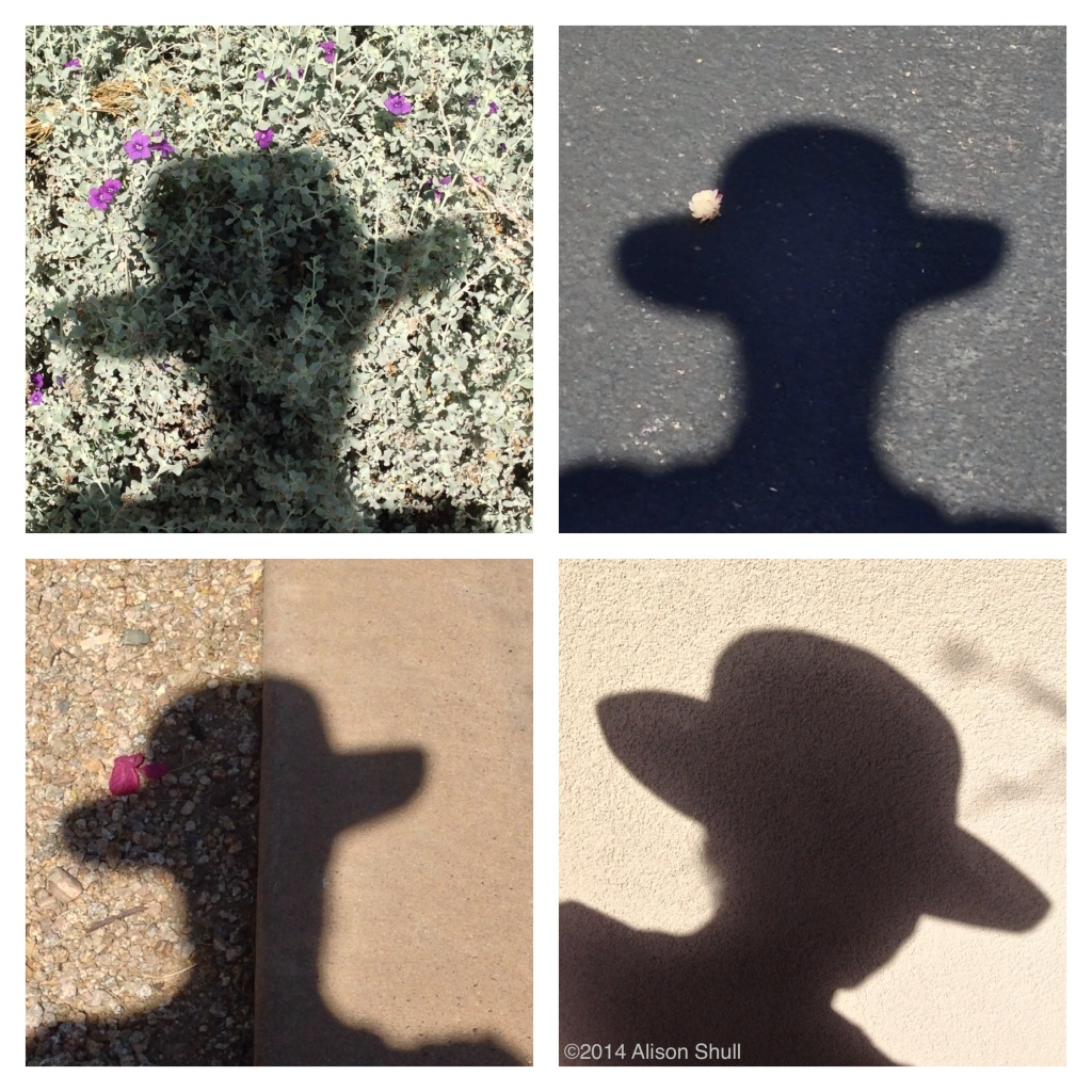 Do You Like My Hat - Desert Shadow Art - photography by Alison Shull