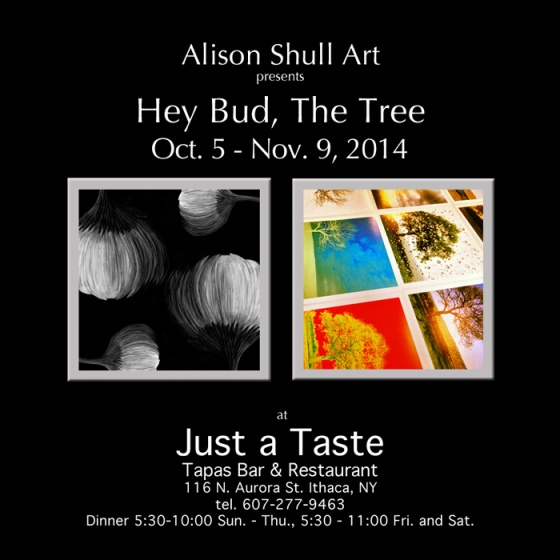 Hey Bud, The Tree - Series Artwork by Alison Shull at Just a Taste